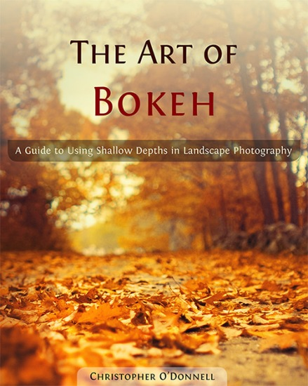 The Art of Bokeh: A Guide to Using Shallow Depths in Landscape Photography