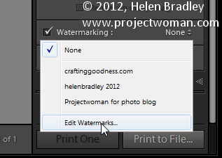 Custom lightroom image watermark 3