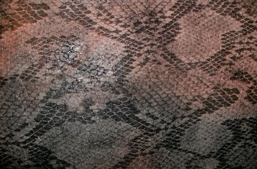 1.snake textures