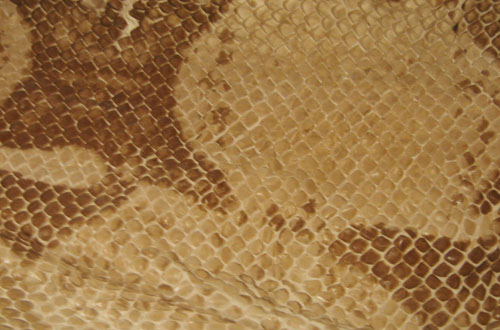 4.snake textures