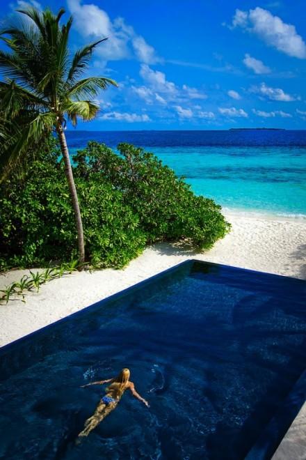 Dusit Thani Maldives17 650x975 Dusit Thani Maldives Resort in Baa Atoll